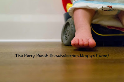 The Berry Bunch: My Baby is NOT a Baby! {potty trained! and a quick round-up}