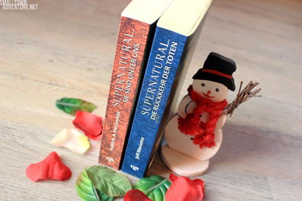 Supernatural Einzelfälle Bücher