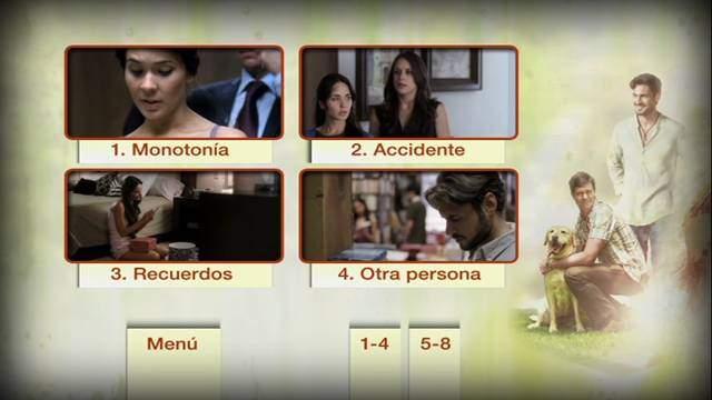 Amar No Es Querer DVDR NTSC Español Latino ISO 2011