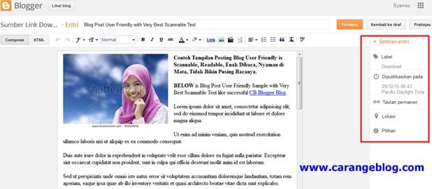 tampilan di laman posting artikel jika Tag Meta Deskripsi Blog Non Aktif