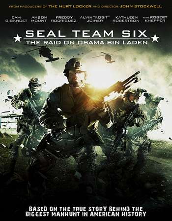 Seal Team Six The Raid on Osama Bin Laden 2012 Hindi Dual Audio BRRip Full Movie Download