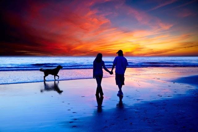 silhouette near beach 2