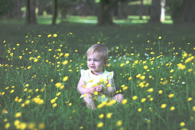 baby girl in buttercup and clover field Cwmbran boating lake South Wales