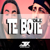 096 Dile Vs. Te Bote ''Don Omar Ft. Ozuna & Varios'' [ JR ] MASHUP