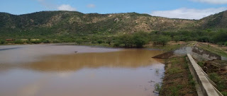 Zona rural do município de Frei Martinho é agraciada com excelentes chuvas