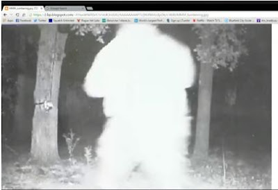 Looking Bigfoot Webcast