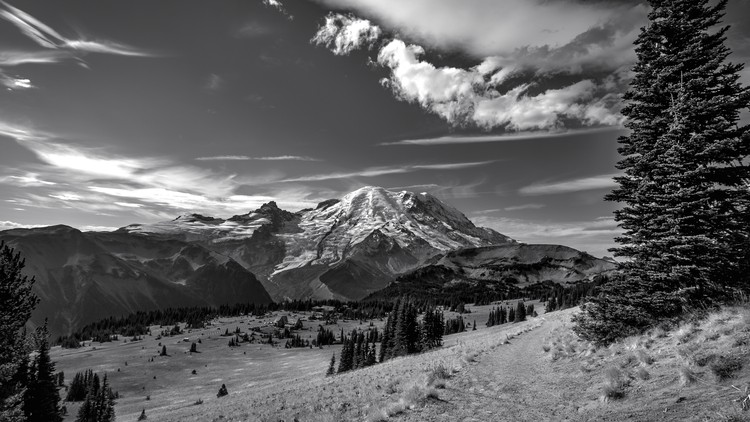 50% off Become a Master of Black & White Photography