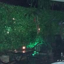 Hallo Pasangan Harmonis,Kunjungi 5 Tempat Malam Minggu Romantis di Kota Medan