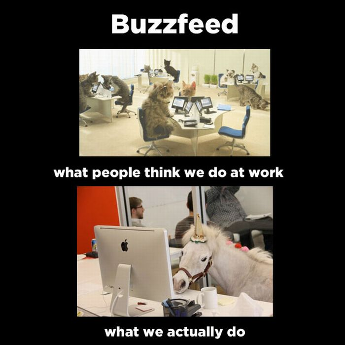 What People Think I Do vs What I Really Do Meme ...