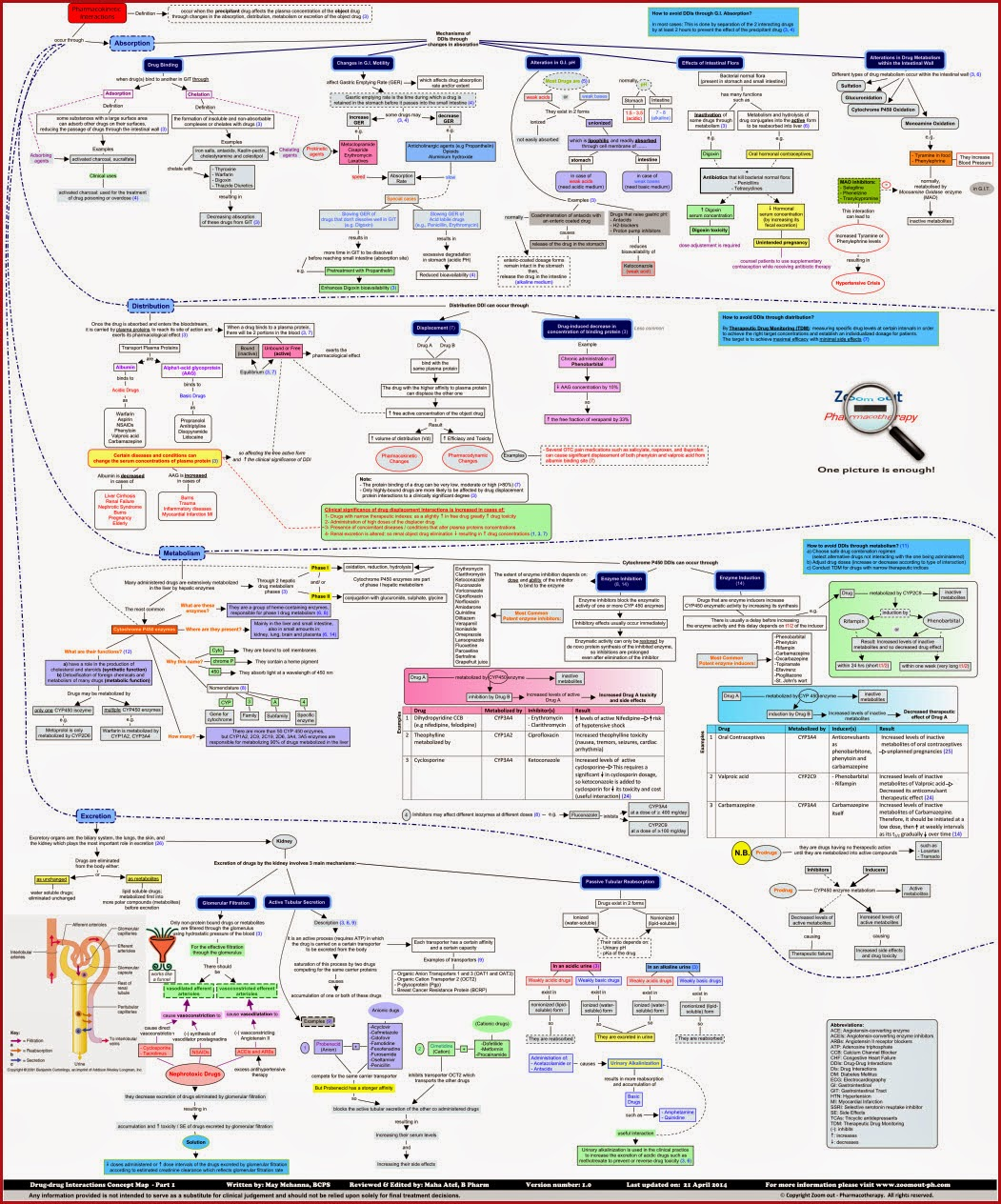 drug_drug_interactions_concept_map_zoom_out_pharmacotherapy