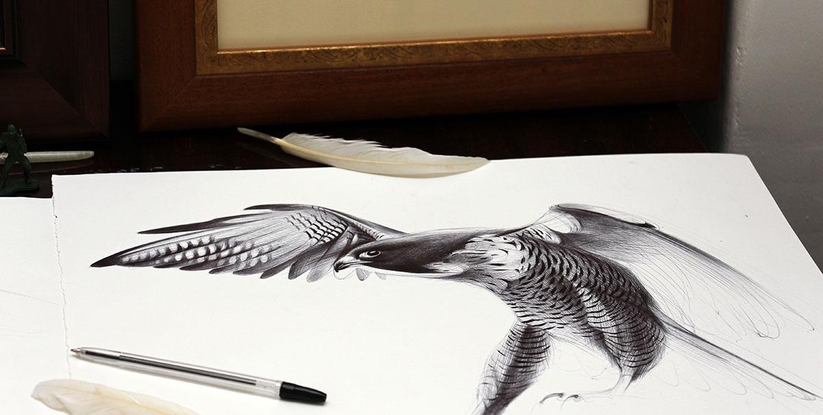 06-Eagle-Yelena-Yefimova-Animals-Drawn-with-Ballpoint-Pens-www-designstack-co