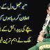 Shoaib Malik nay bojhal dil kay sath elaan kar diya.