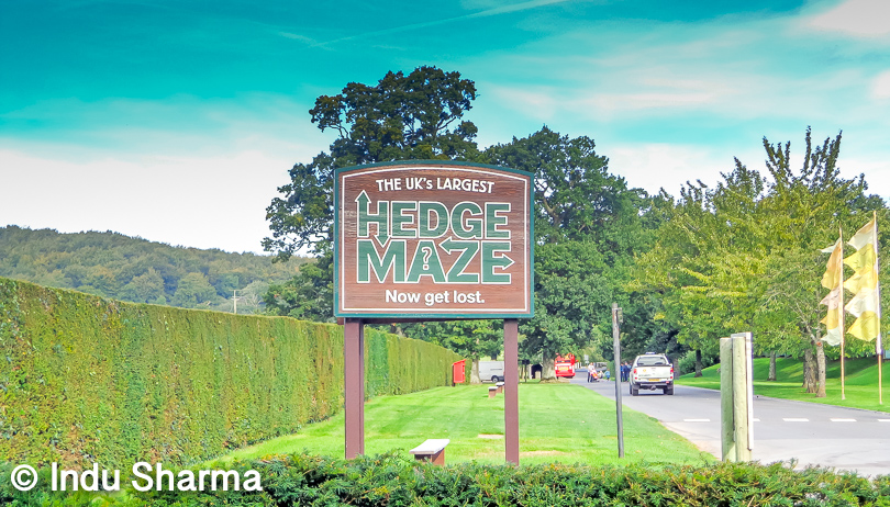 Hedge maze: The maze is constructed of more than 16,000 English yews and is one of the longest hedge maze in the world. It is fun to lost into it, choose which path to follow, which path can be dead end and which path will give you way to come out of it. After multiple attempts and with the help of all friends we completed it in 50 mins.