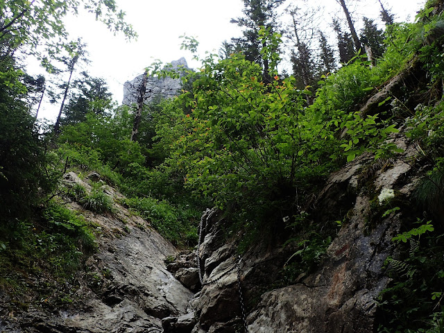 Szlak do Jaskini Raptawickiej/Mylnej w przybliżeniu