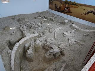 Contexto arqueológico del yacimiento