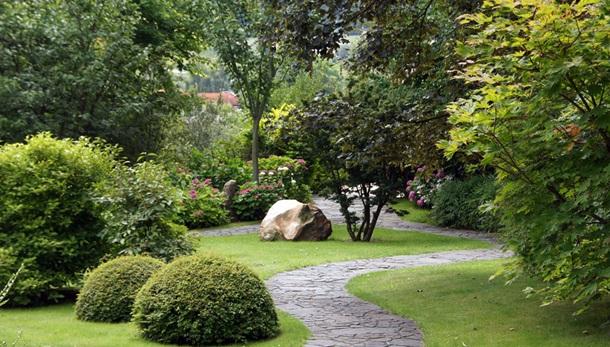 Сочетание растений в саду