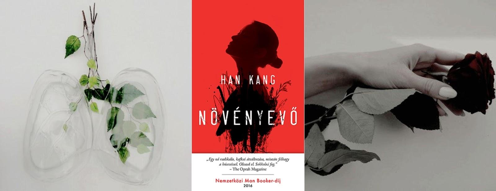 bb31ff6dd5 Han Kang regénye volt az idei első olvasmányom és mindenképp megalapozta az  évem. Nagyon mély hatással volt rám, kellett is hozzá jó pár nap, ...