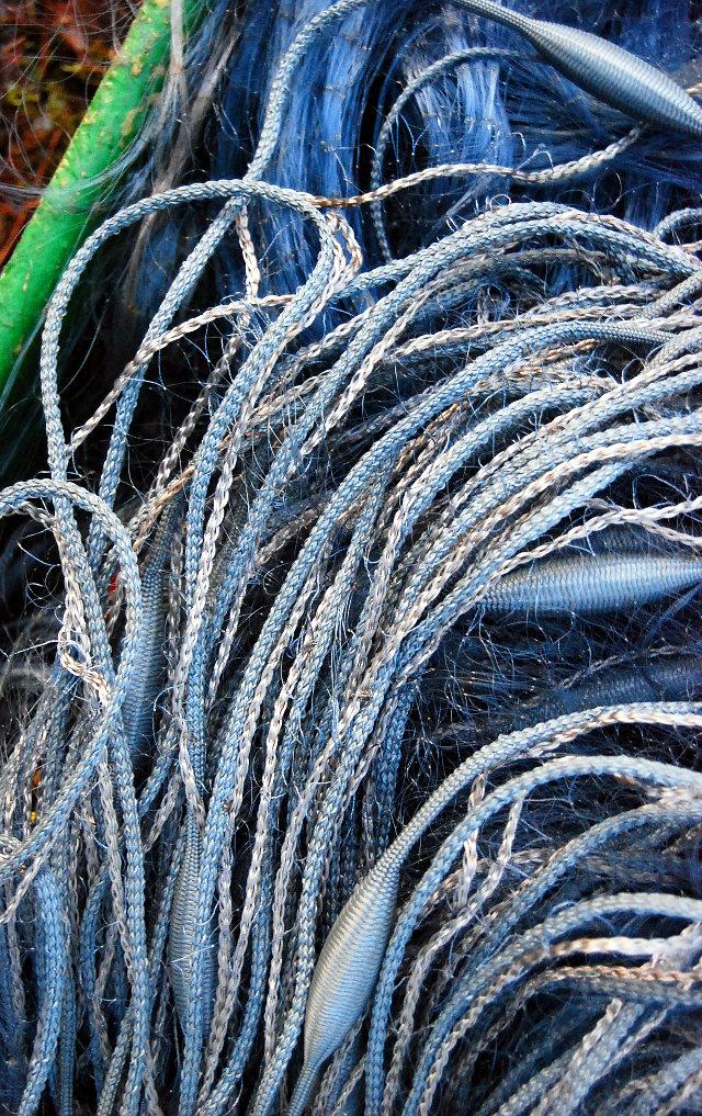 kalaverkko, verkko, blue, fishing, lake, finland, suomi, järvi