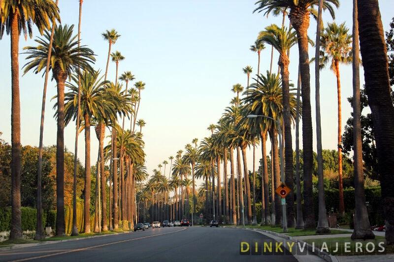 Beverly Hills. Avenida de Palmeras