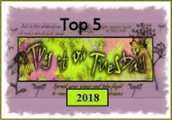 Delighted to be Top 5 in the TIOT challenge