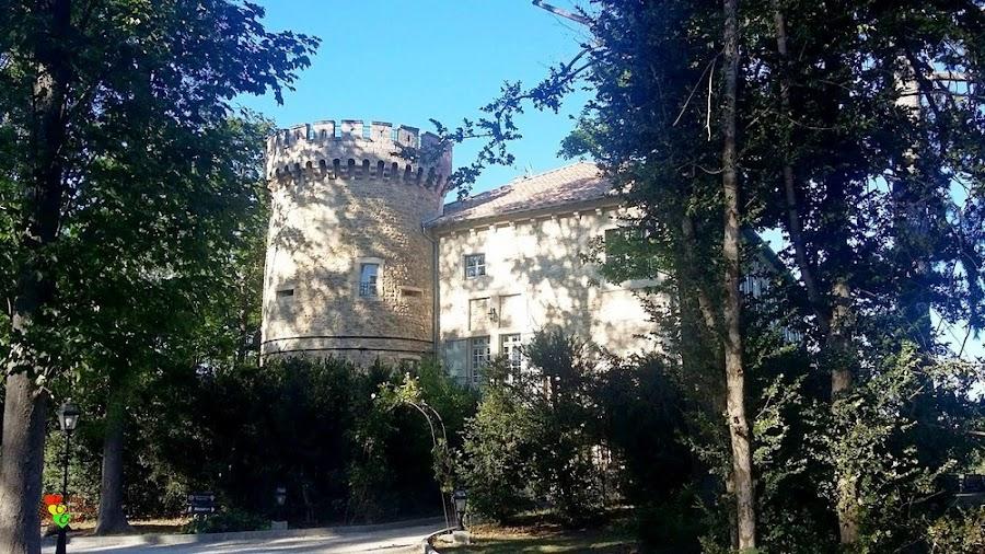 Chateau-Les-Olivers-de-Salettes