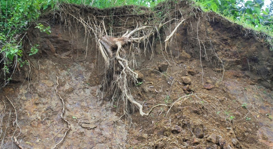 Fenomena Terjadinya Erosi Tanah  ILMU ALAM