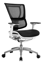 Eurotech Seating iOO Premium Mesh Back Office Chair