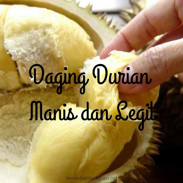 produsen-daging-durian-medan-maidanii-di-banjar