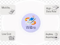 Pengertian Wi-Bro
