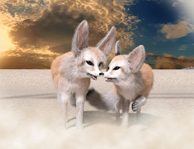 Fennec for Foxes by AM