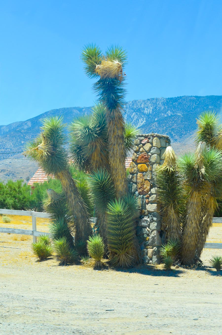 Highway 395 Photos Diary Mono Lake, California to InyoKern + Indian Wells| Luci's Morsels :: California Travel Blogger