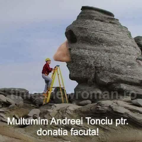 Donația Andreei Tonciu