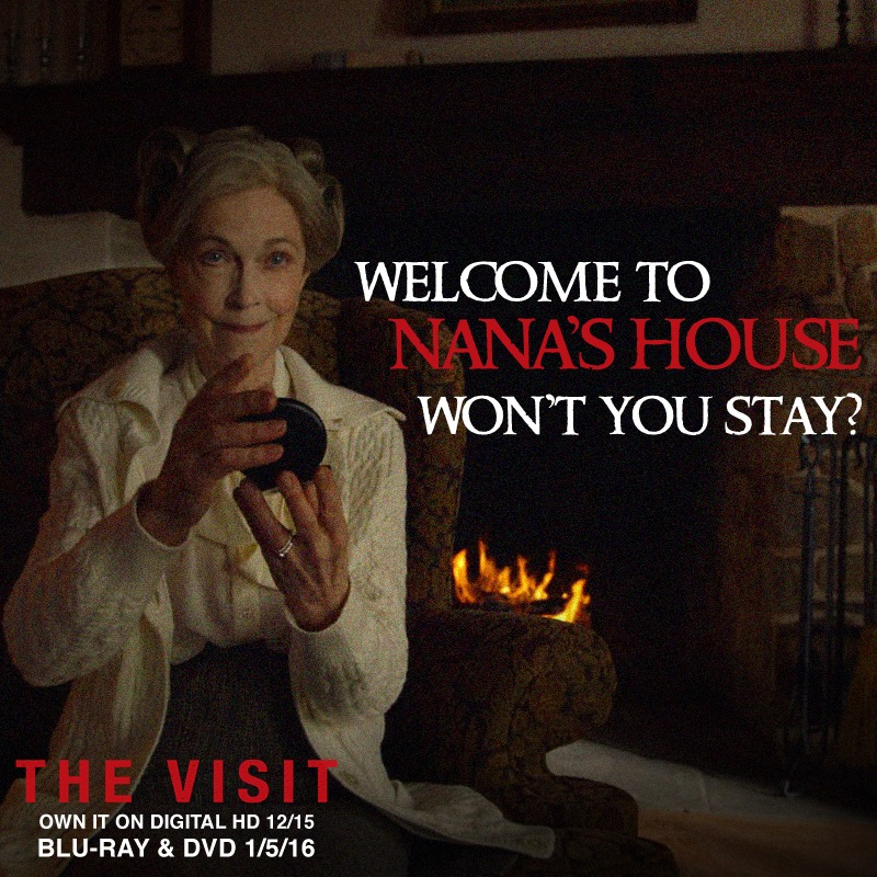 the-visit-promotional-material