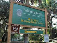 Fisheating Creek WMA