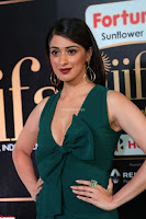 Laxmi Rai in a Deep neck Beautiful Green Gown Cute Actress Laxmi Rai ~  071.JPG