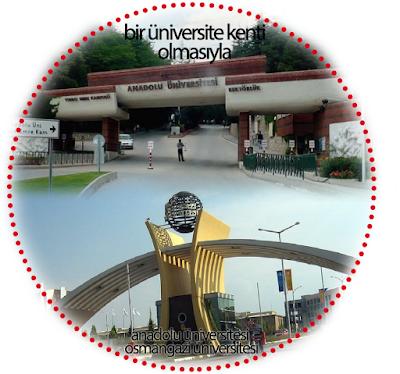 anadolu üniversitesi, aü, eskişehir osmangazi üniversitesi, esogü