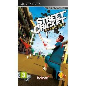 Street Cricket Champions Game For PC Free Download