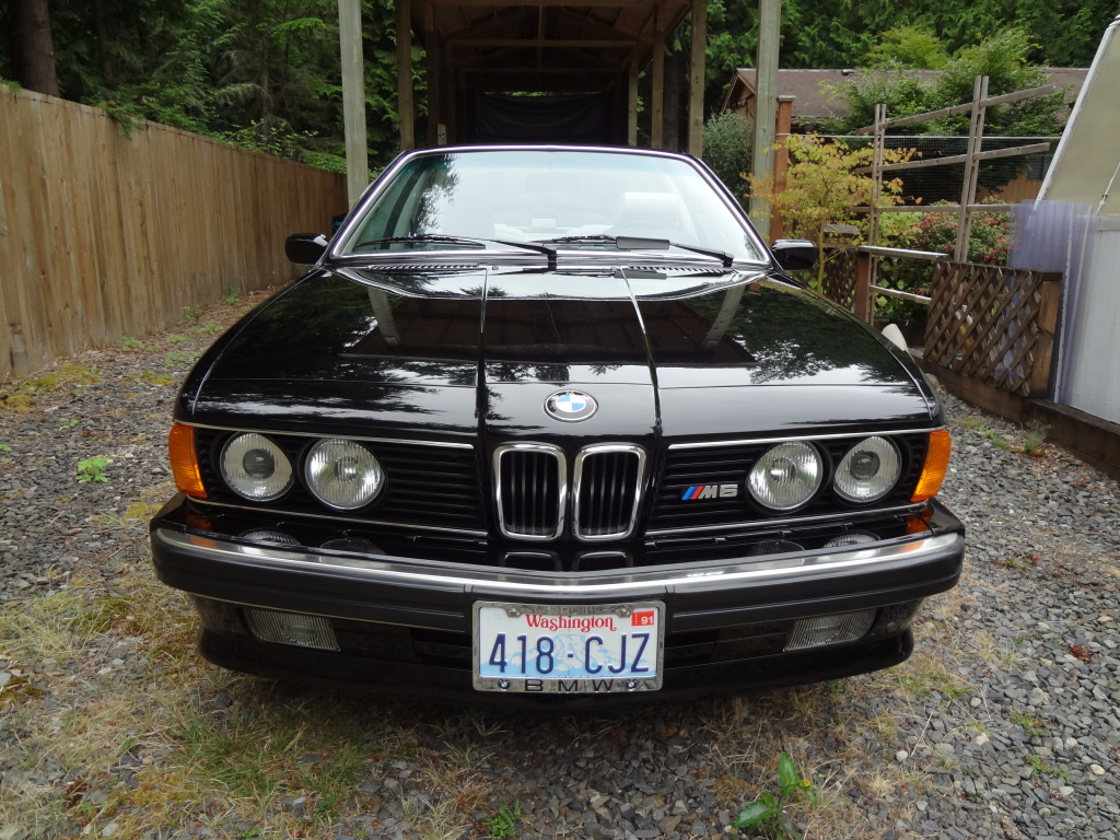 tamerlane 39 s thoughts 1988 bmw m6 e24 for sale. Black Bedroom Furniture Sets. Home Design Ideas