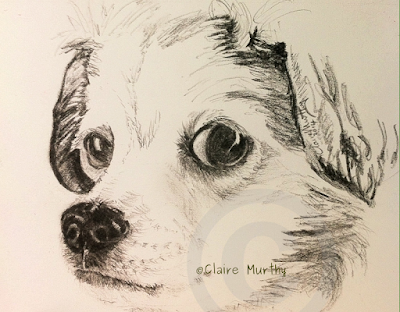 sketch of small dog