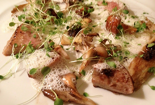 Bouley forager's treasur of wild mushrooms