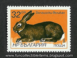 Rabbit Stamp Picture