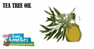 Home Remedies For Boils and Abscesses: Tea Tree Oil