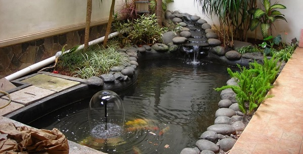 Desain Kolam Ikan Dalam Rumah - Budidaya Ikan