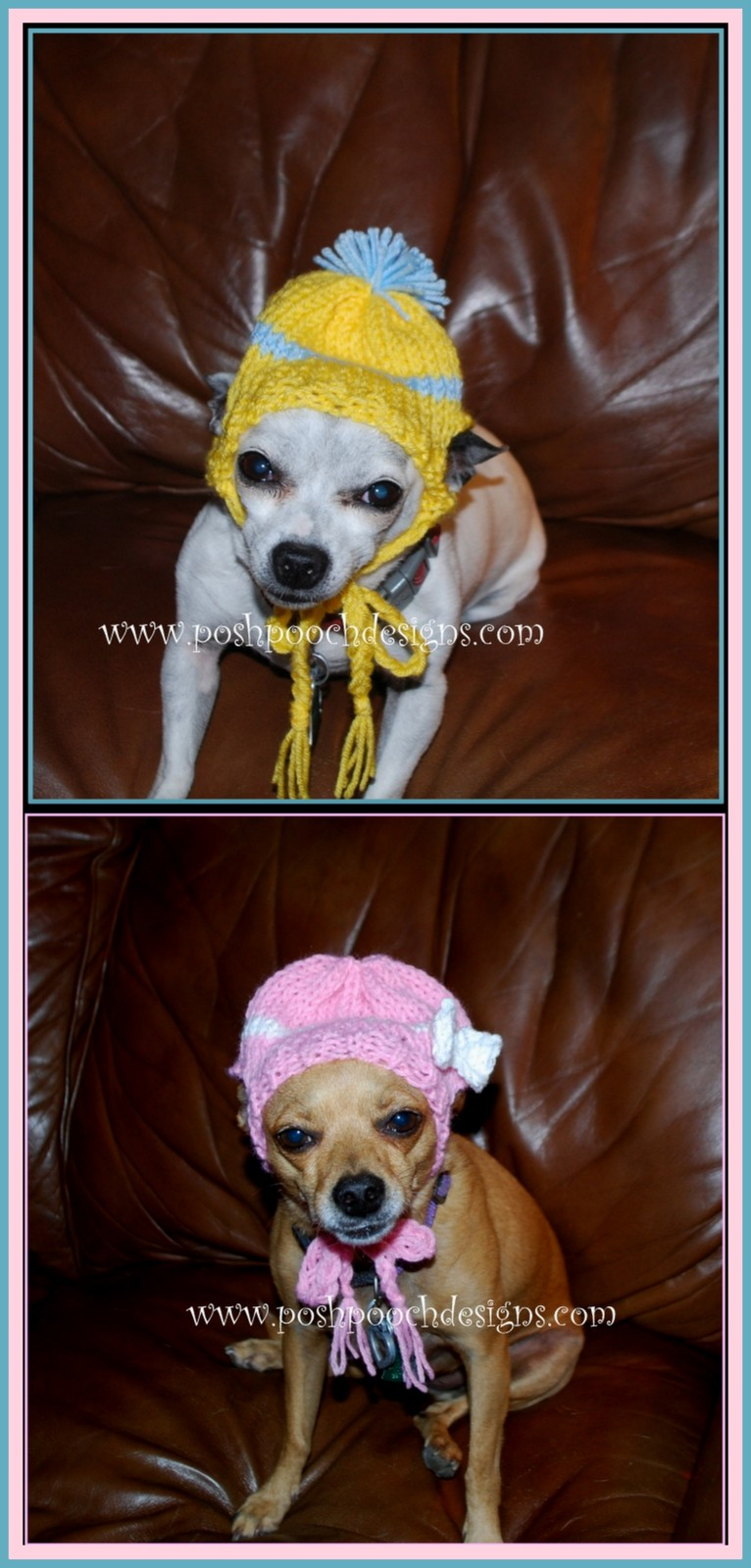 Posh pooch designs dog clothes chihuahua beanie hat knitting it is ready bankloansurffo Image collections