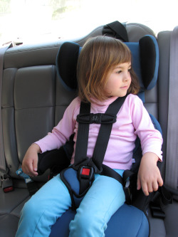 Traveler Beware Car Seat Laws In Costa Rica Are Stricter Than Those