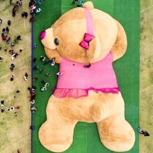 """22 dos mais loucos recordes mundiais do """"Guinness""""    em 2019"""
