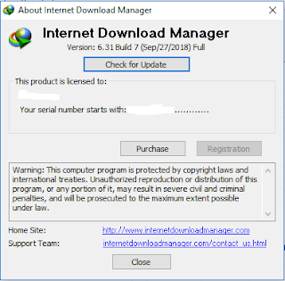 Internet Download Manager 6.31 build 7