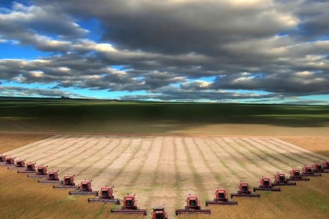 Razjedinjenost u zastupanju poljoprivrednika: Svaka udruga ore svoje brazdu