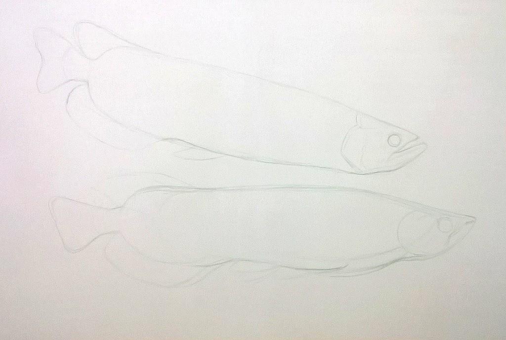 Dunia Lukisan Javadesindo Art Gallery Cara Melukis Ikan Arwana