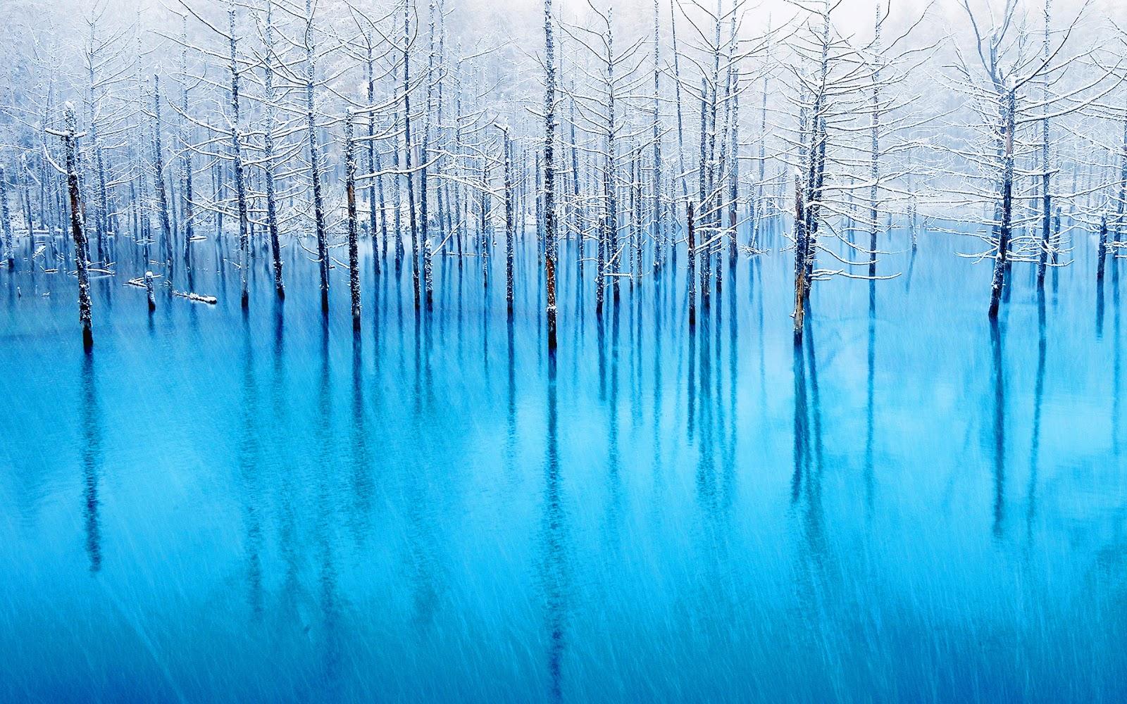 blue pond unique japan hokkaido